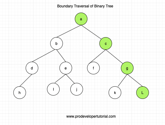 8_boundry_traversal_of_binary_tree-min